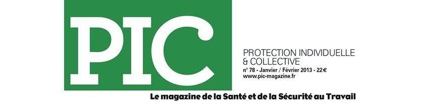 Logo PIC