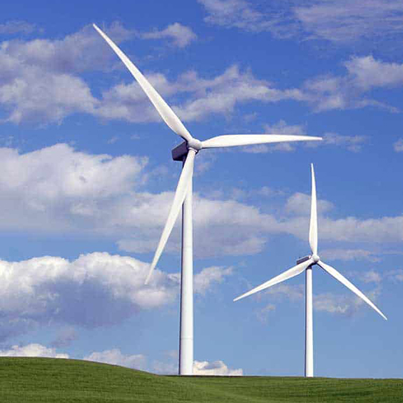 éoliennes dans un champs